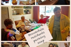 Brookdale-volunteers